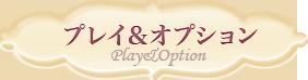 可能プレイ&オプション